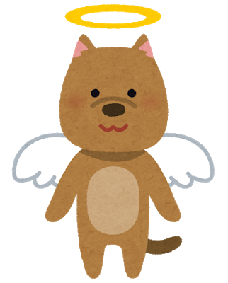 pet_angel_dog